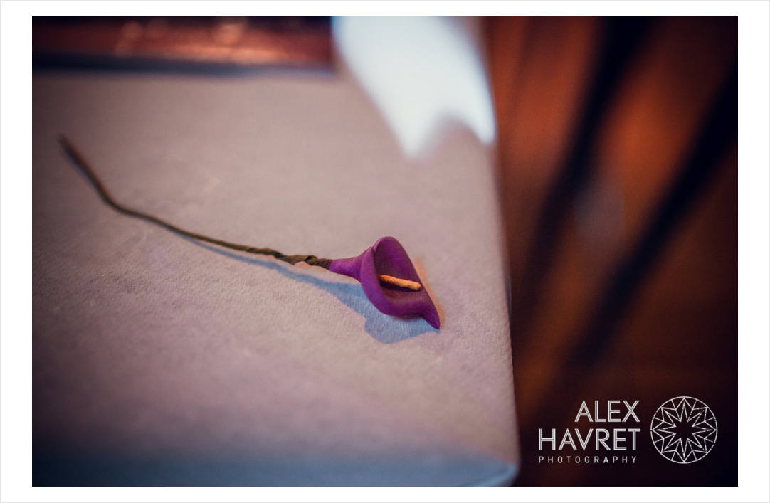 alexhreportages-alex_havret_photography-photographe-mariage-lyon-london-france-AT-5207
